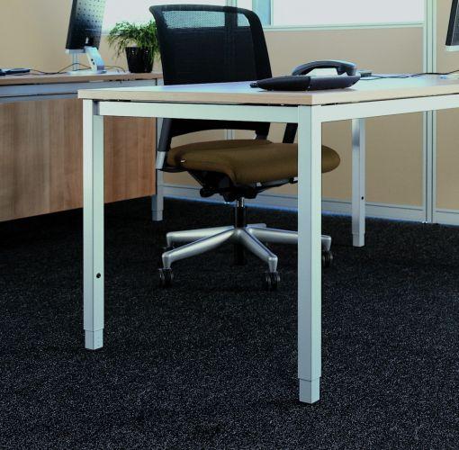 Hund-Schreibtisch-c4_Quadratfuß