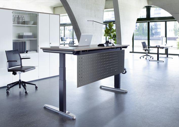 Hund-Schreibtisch-Thales_Steh-Sitztisch