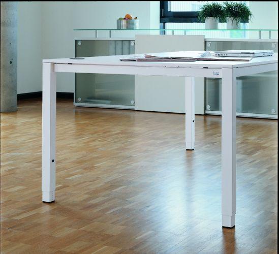 Hund-Schreibtisch-c4_evolution